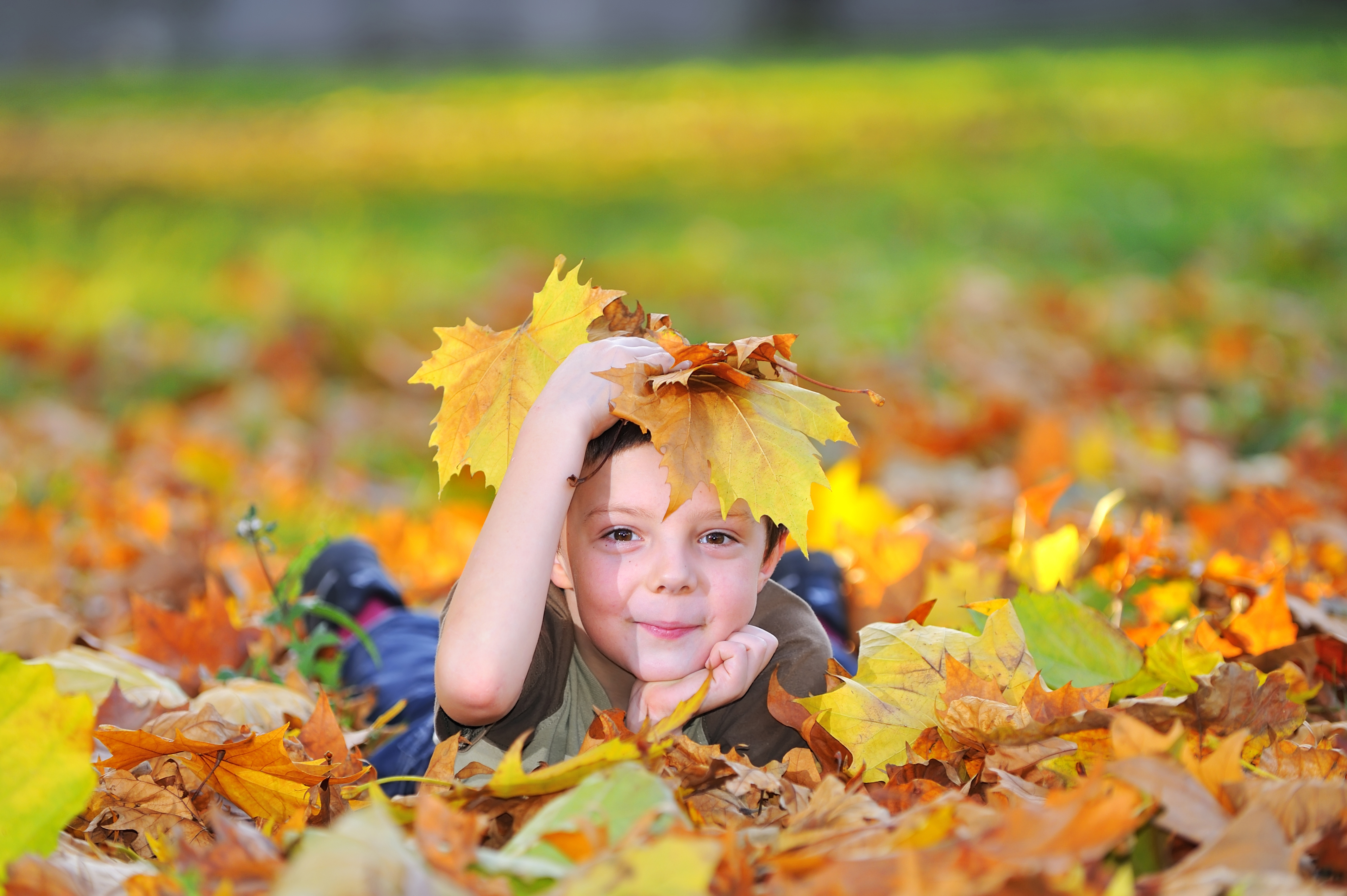 kid playing with leaves